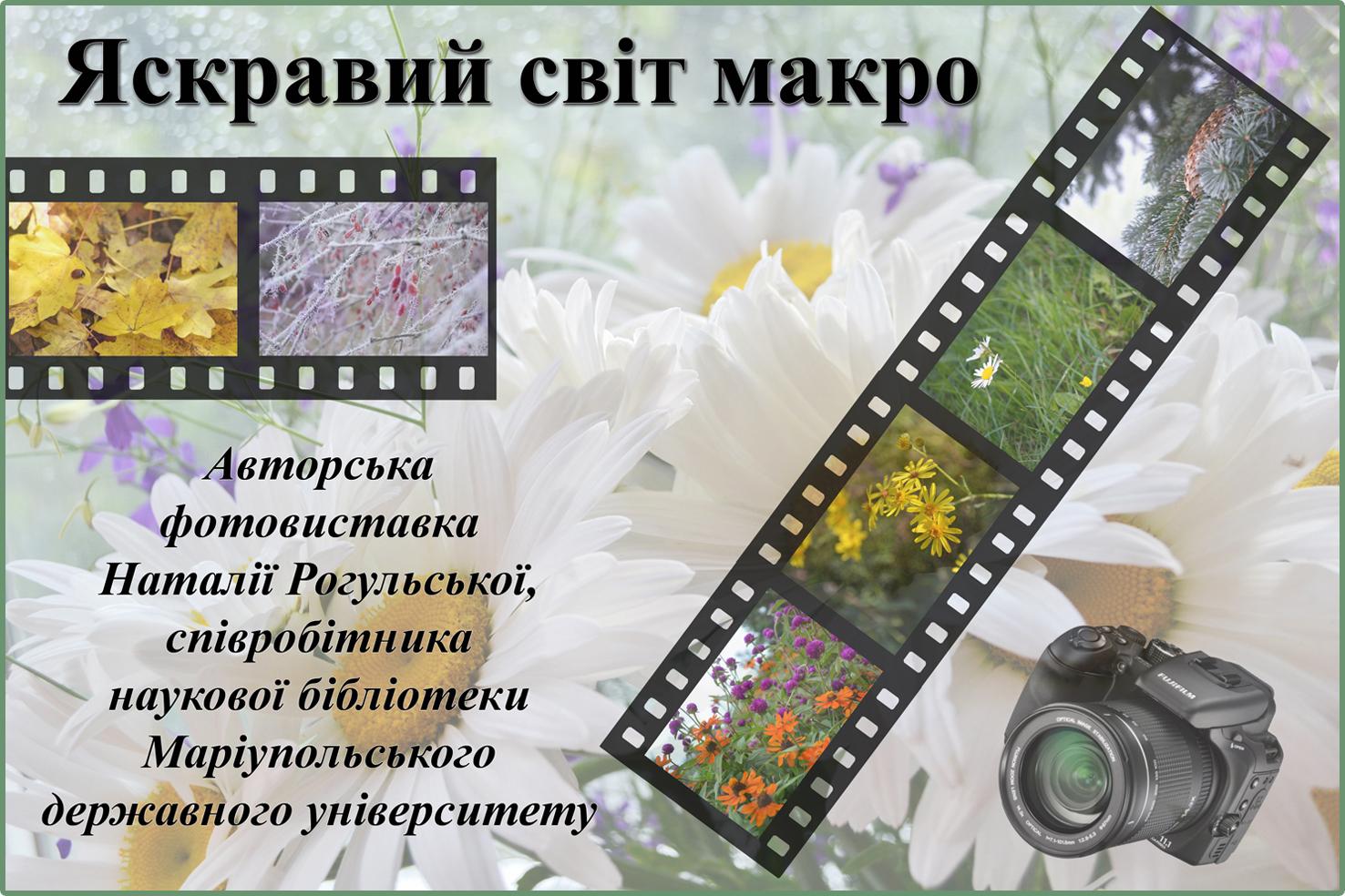 makro_foto
